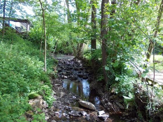 Geocaching in Leichlingen