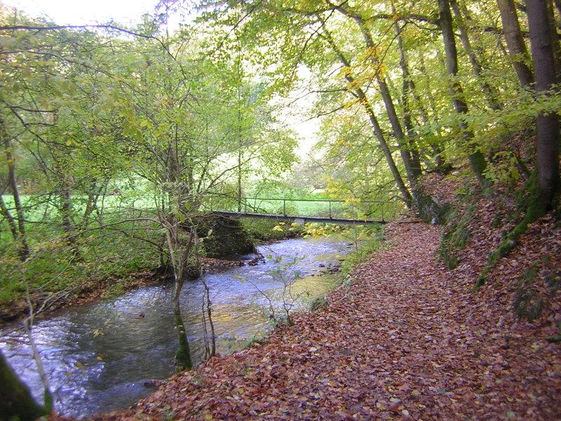 Mühlbachtal_2010-10-24--15.08.45_SG