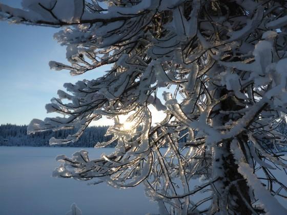 Schneeschuh Hiking über See