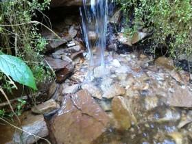 Naturquelle-Soonwald-2