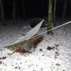 BCP Wintertreffen Opelwiese 2014-01-26 021
