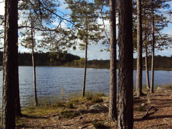 Finnland 2012 (9)