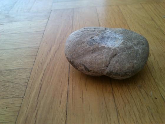 stein 4