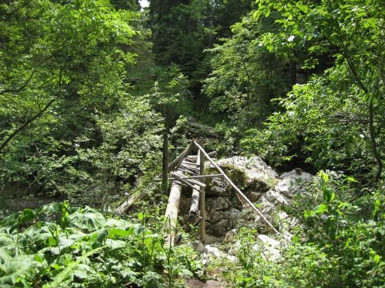 Bushcraftbrücke 2