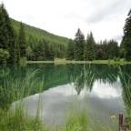 Juni 2010 Thüringer Wald