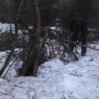 vlcsnap-2018-01-14-18h56m49s442