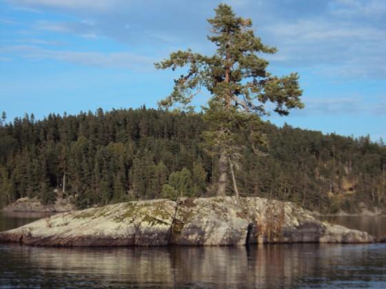 Schweden 2010 b