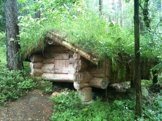 Mini Blockhütte