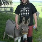 Allgäuer und Westfälischer Esel