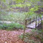 Mühlbachtal_2010-10-24--15.16.08_SG
