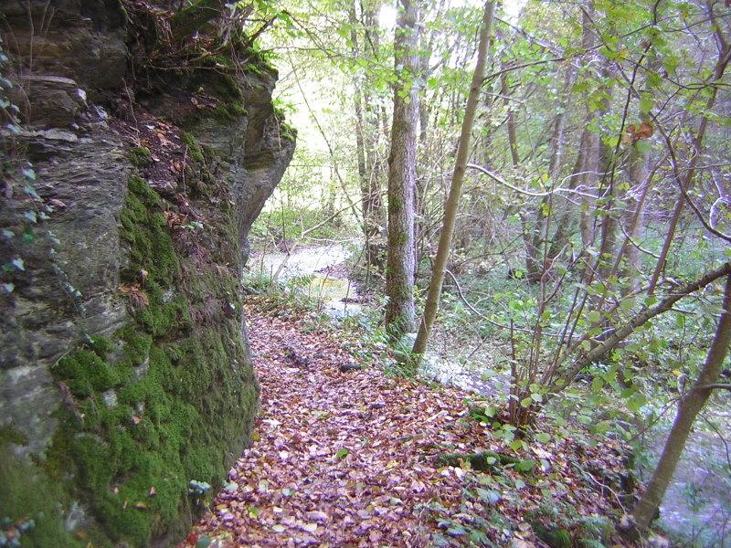Mühlbachtal_2010-10-24--15.15.42_SG