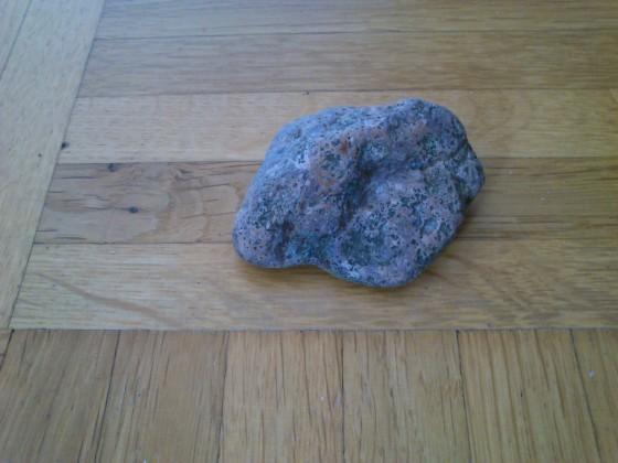 stein 1
