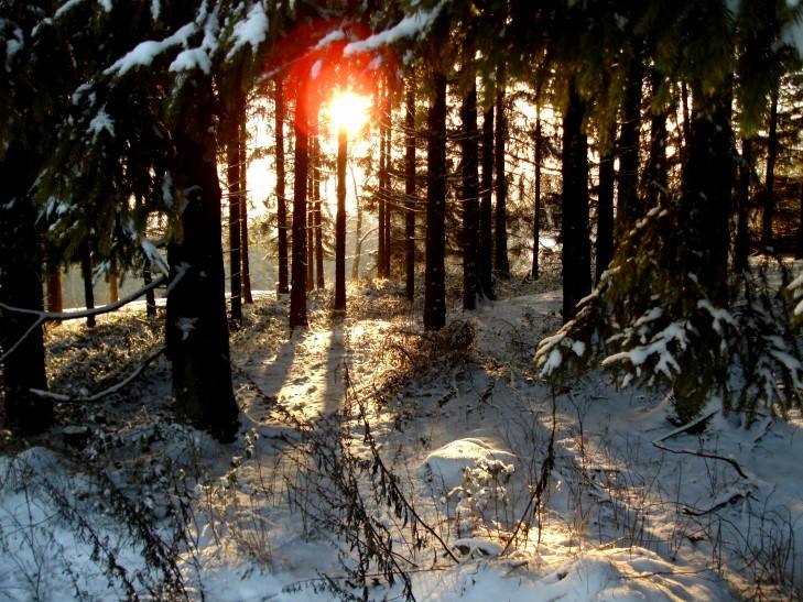 Sauerländer Winter